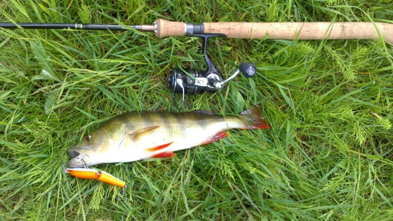 Fynske Lystfiskere
