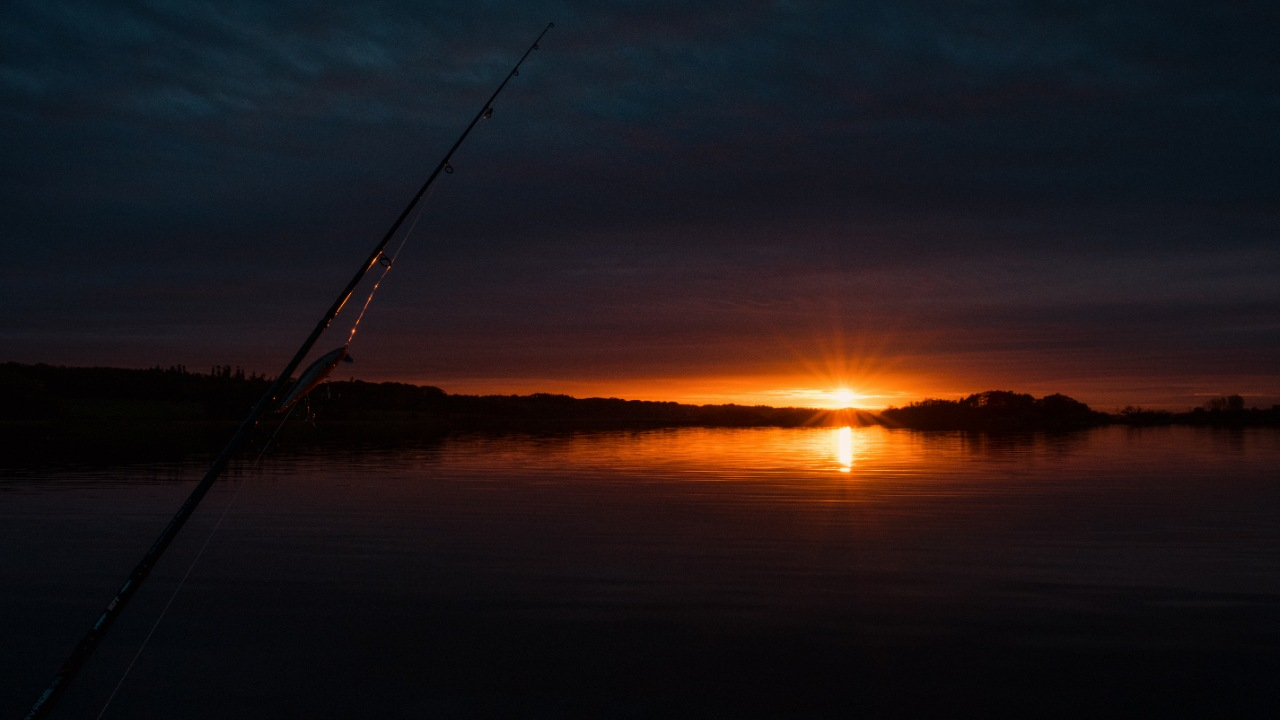 Sorø Lystfiskerforening