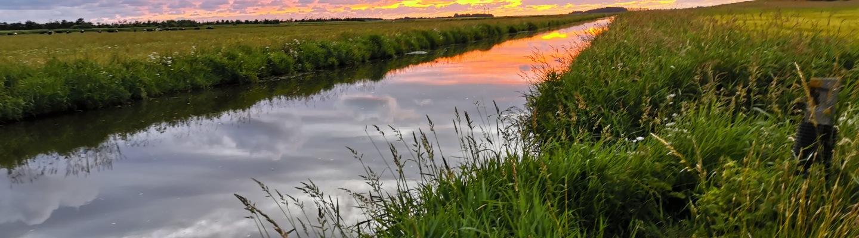 åen2.jpg