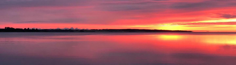 Ordrup solnedgang.jpg