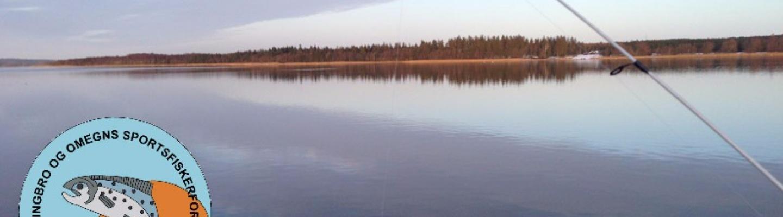 Primær tange sø.jpg